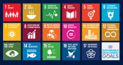 United Nations Goals